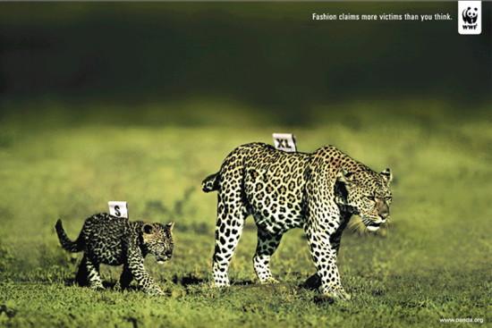 14 550x367 WWF против убийств животных