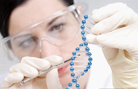 genetika1 Учёные генетики и их достижения
