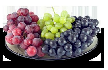 grapes on plate Антиоксиданты и их польза для организма