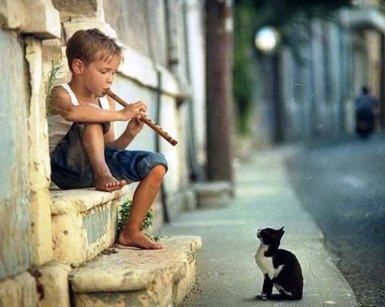 1352353048 muzykant 550x439 10 причин учить ребенка музыке