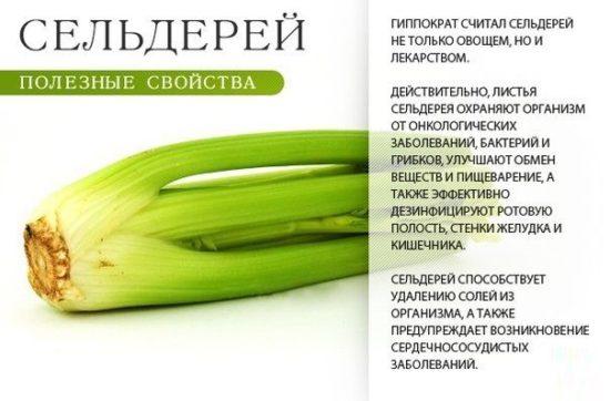 6oljAWWmJb4 550x362 Овощи лекарства и их полезные свойства