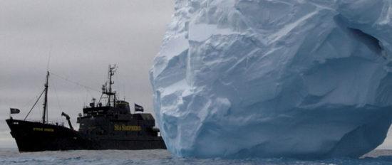 shepherd ice 550x232 Морской пастух на страже моря
