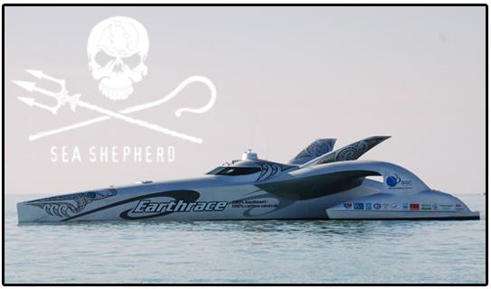 earthrace seashepherd Китовые войны   2 сезон