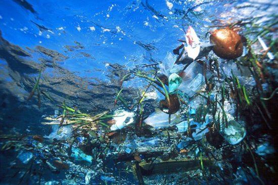 trash1 550x366 Пластиковый мусор