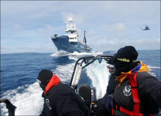 whale wars 01 550x396 Китовые войны   2 сезон