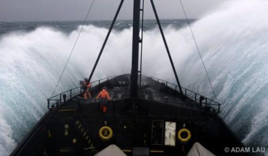 whale wars cameras 550x321 Китовые войны   2 сезон