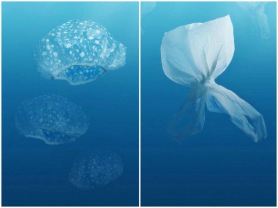 20121218021634 550x413 Экологическая реклама против пластикового мусора