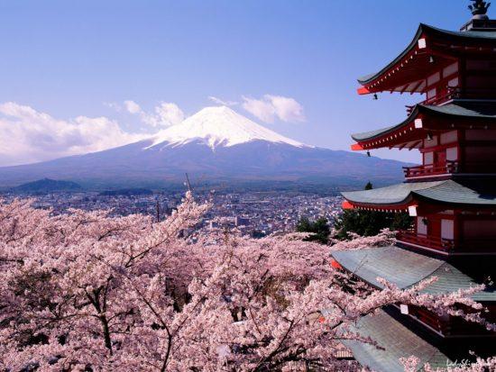 asia01417 550x413 80 интересных фактов о Японии