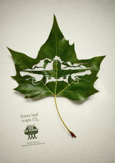 13 Plant for the planet 389x550 Экологическая реклама в защиту лесов