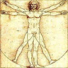 images Интересное о человечком организме
