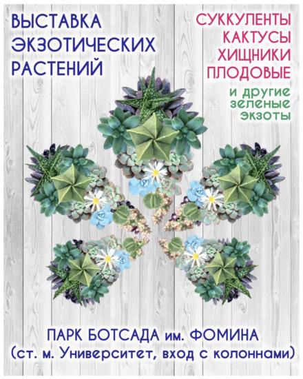 succulent show kiev botsad fomina 440x550 Выставка кактусов
