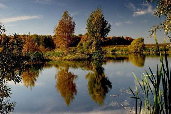 4 550x366 Осень в стихах