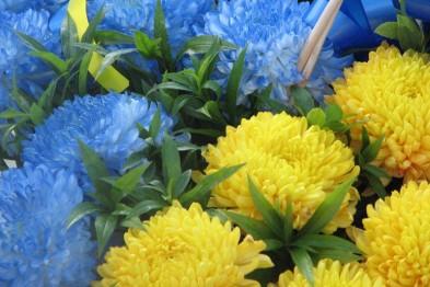 foto 10 1 140837039264 День Государственного флага Украины