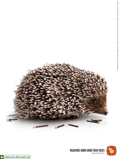 02   eco ads print 550 420x550 Экореклама о лесных пожарах