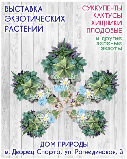 succulent show kiev nodates 440x550 Выставка кактусов 8 11октября