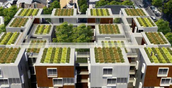 6702030 original 550x281 Зеленые крыши Франции