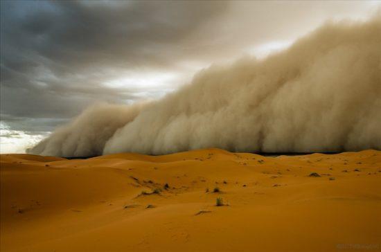 sahara peschanaya burya 07 550x364 Песчаная буря
