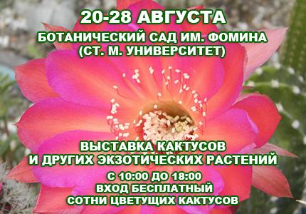 20 28cactus Выставка кактусов и других экзотических растений