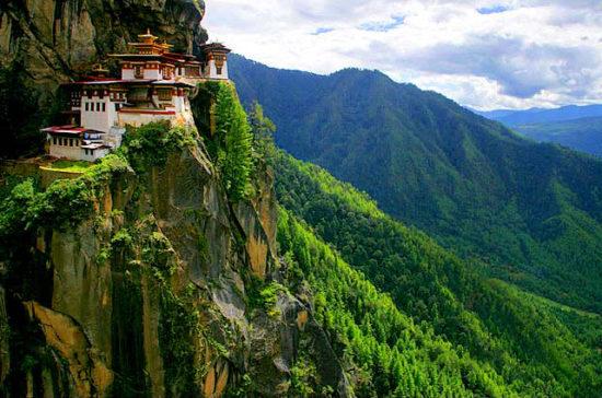 7064033 original 550x364 Согласно Конституции Бутана 60% страны должно быть покрыто лесными насаждениями