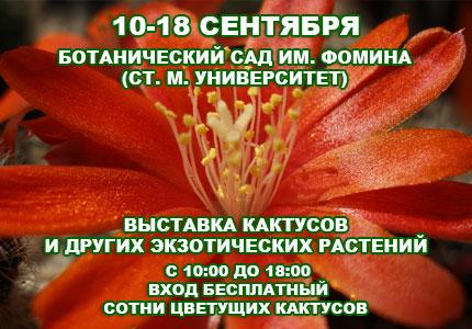 10 18 09cactus Сентябрьская выставка кактусов