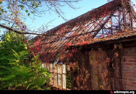 97 big 550x382 Как жителям Ростова на Дону удалось отстоять свой ботанический сад