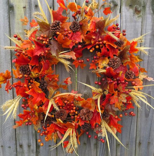 POZDRAVLYAYU 540x550 Ноябрь   подготовка растений к зимней спячке