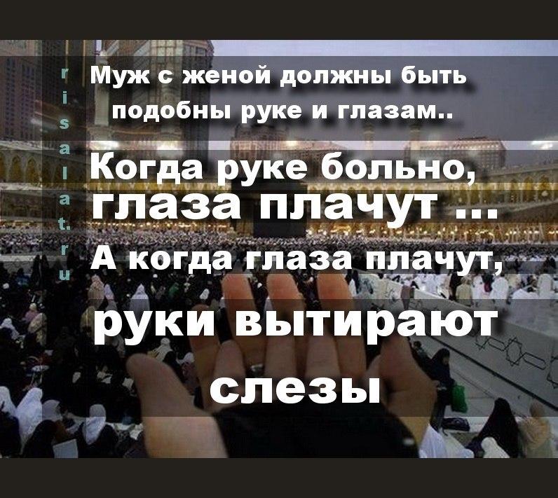 Erkatoyka