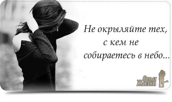 http://www.ecoterica.com/wp-content/uploads/2014/05/EuvOQVRaSmw.jpg
